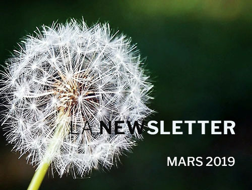 Newsletter Mars 2019 - VSF