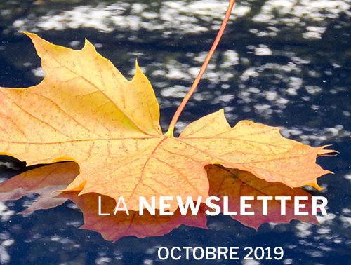 VSF Newsletter Octobre 2019